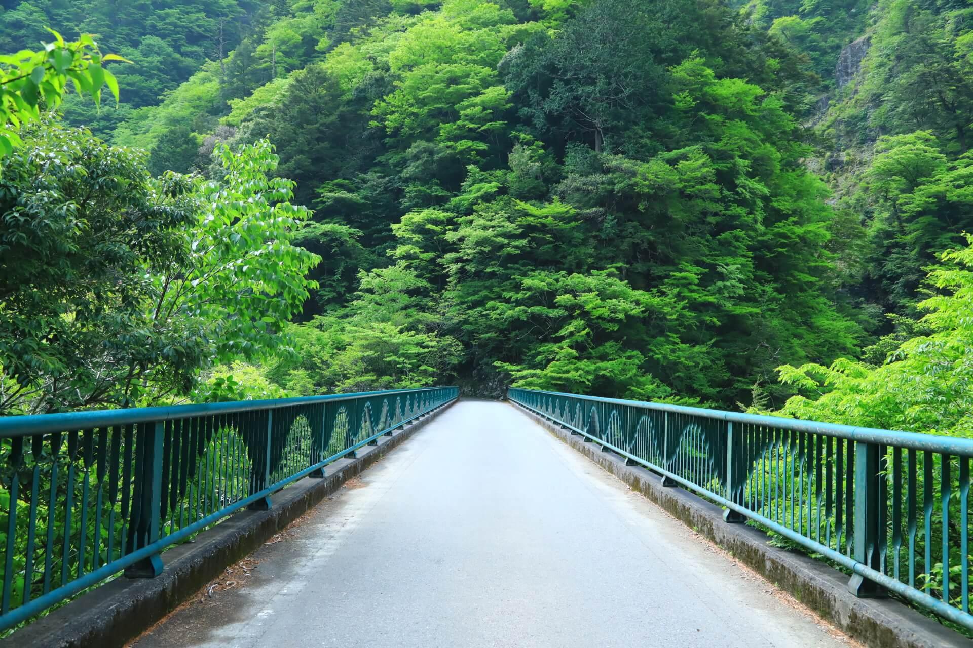 寸又峡飛龍橋