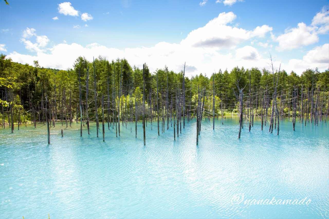 午前中の青い池