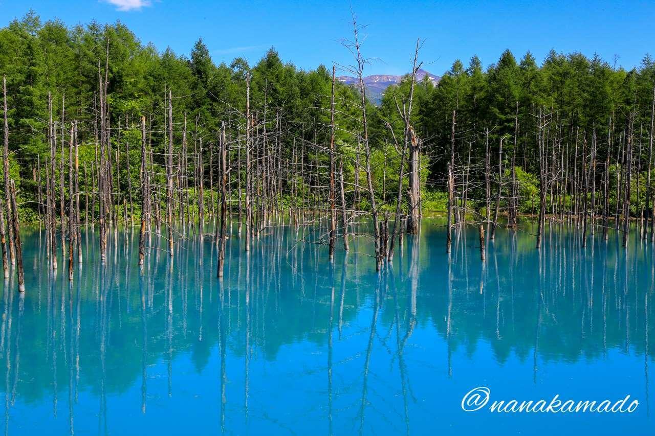 青い池午後