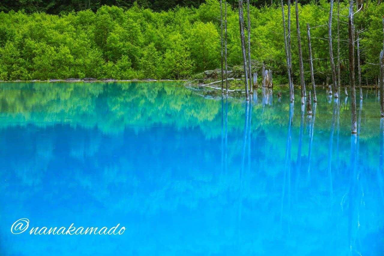 青い池曇りの日