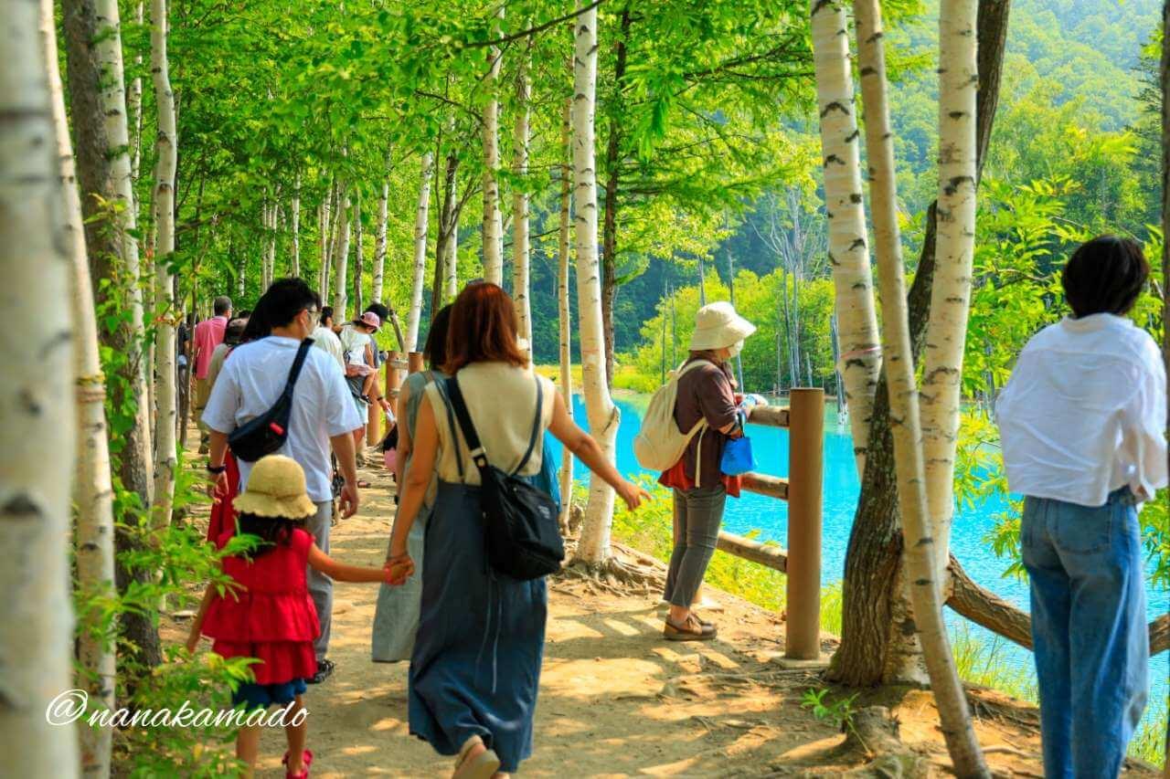 青い池の道