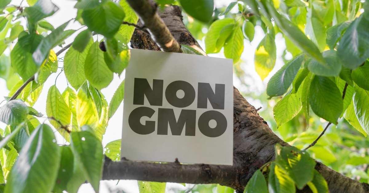NON-GM